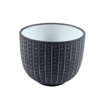 Tallentire House Tea Cup Urchin Black